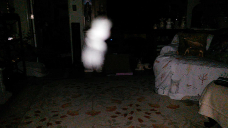 This is the third still image, of eight images presented, of The Light of Mother Mary; as captured on video the evening of May 10, 2018.