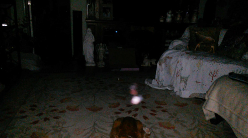 This is the ninth still image, of twenty-six images presented, of The Light of Mother Mary; as captured on video the evening of April 30, 2018.