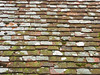 UK old roof
