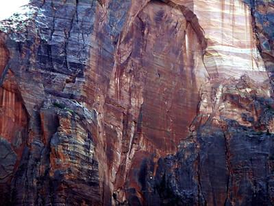 Zion Rock (Zion Nat. Park, UT)