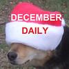 dec daily cover 2