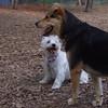 ISABELLA & Maddie