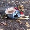 MADDIE (halloween cowgirl).