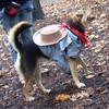 MADDIE (cowgirl) (brian arrives)