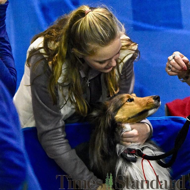 . Gabrielle Wadsworth gives a Shetland Sheepdog a big hug. José Quezada�For the Times-Standard