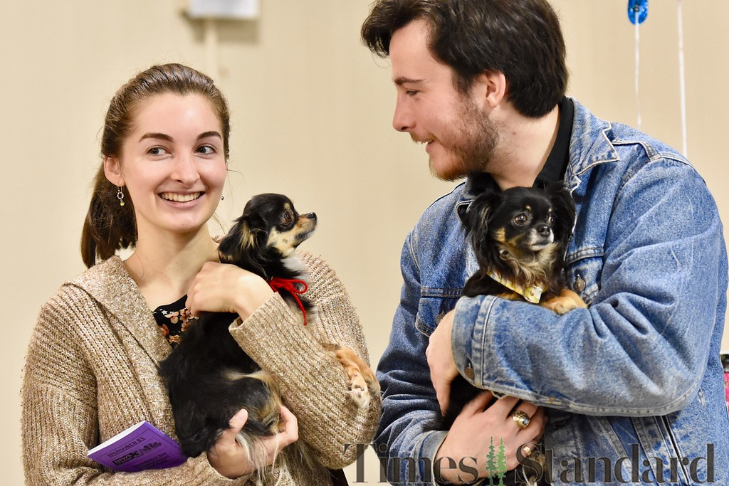 . Hayley Warren and Cameron Seeger hold two long-haired Chihuahuas,  Daisy and Olive for a few minutes at the Dog Expo Sunday. José Quezada�For Times-Standard