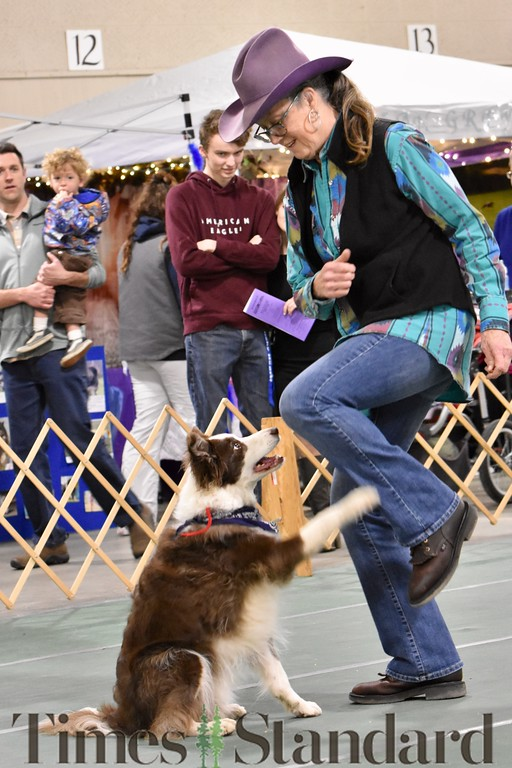 . Nora Winge performs a dance with her Border Collie Teague, 11. He is a retired agility dog. José Quezada�For the Times-Standard