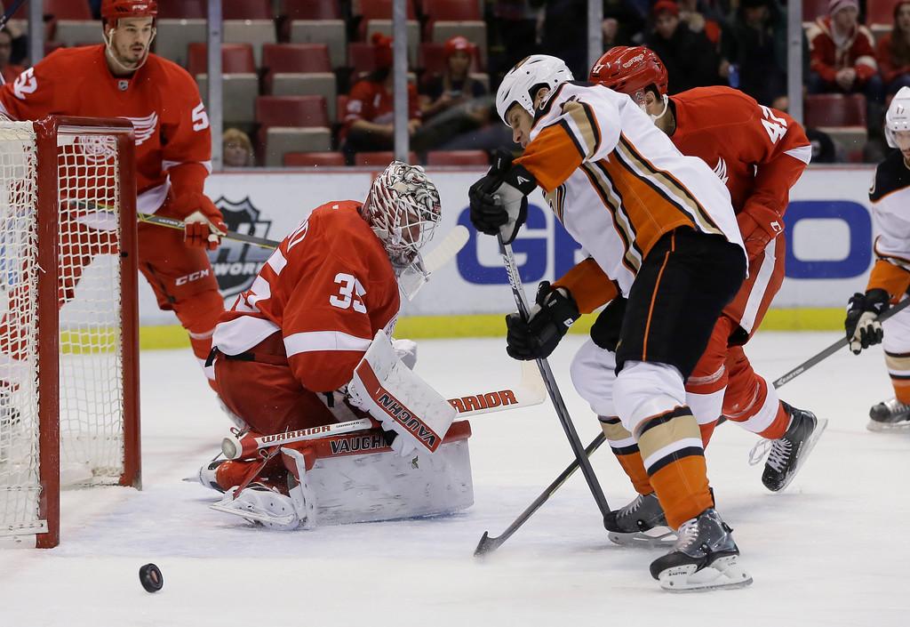 Ducks Red Wings Hockey