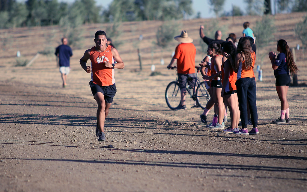 . MATT MURPHY - DAILY DEMOCRAT Woodland High\'s Geronimo Hernandez sprints the final meters of the second of three Tri-County Conference meets at Muller Vineyards on Oct. 4.