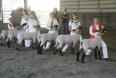 Shaun Walker — The Times-Standard  Children learn to show sheep in the judging pavillion on Friday.