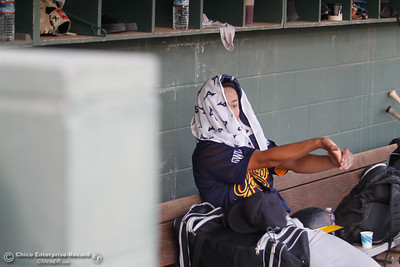 The Gold Sox's Shinpei Kanamori  sits in the dug out after being taken out of the game during a baseball game between the Chico Heat and the Marysville Gold Soxs June 23, 2016 in Chico, Calif. (Emily Bertolino -- Enterprise - Record)