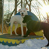 Bradley (puppy), Lexy (pitbull girl)_02