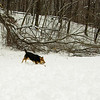 gedney snow_07