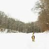 gedney snow_03