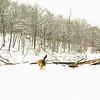 gedney snow_01