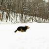 Madie, gedney, run, snow