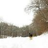 gedney snow_04