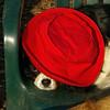 Charlie (shy spaniel) hat_02