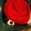 Charlie (shy spaniel) hat_07