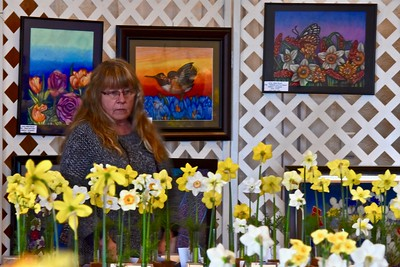 A daffodil lover admires the Spring flower with Fortuna Art Club works hanging in the background. Jose Quezada — For Times-Standard