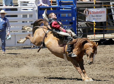 Shaun Walker — The Times-Standard  Aaron Colby of Hydesville rides bareback at the Fortuna Rodeo in Rohner Park on Saturday. The rodeo concludes today with a run and walk at 9 a.m., barbecue with live music at 11 a.m., carnival at noon, and rodeo action at 1:30 p.m. For more information, go to fortunarodeo.com.
