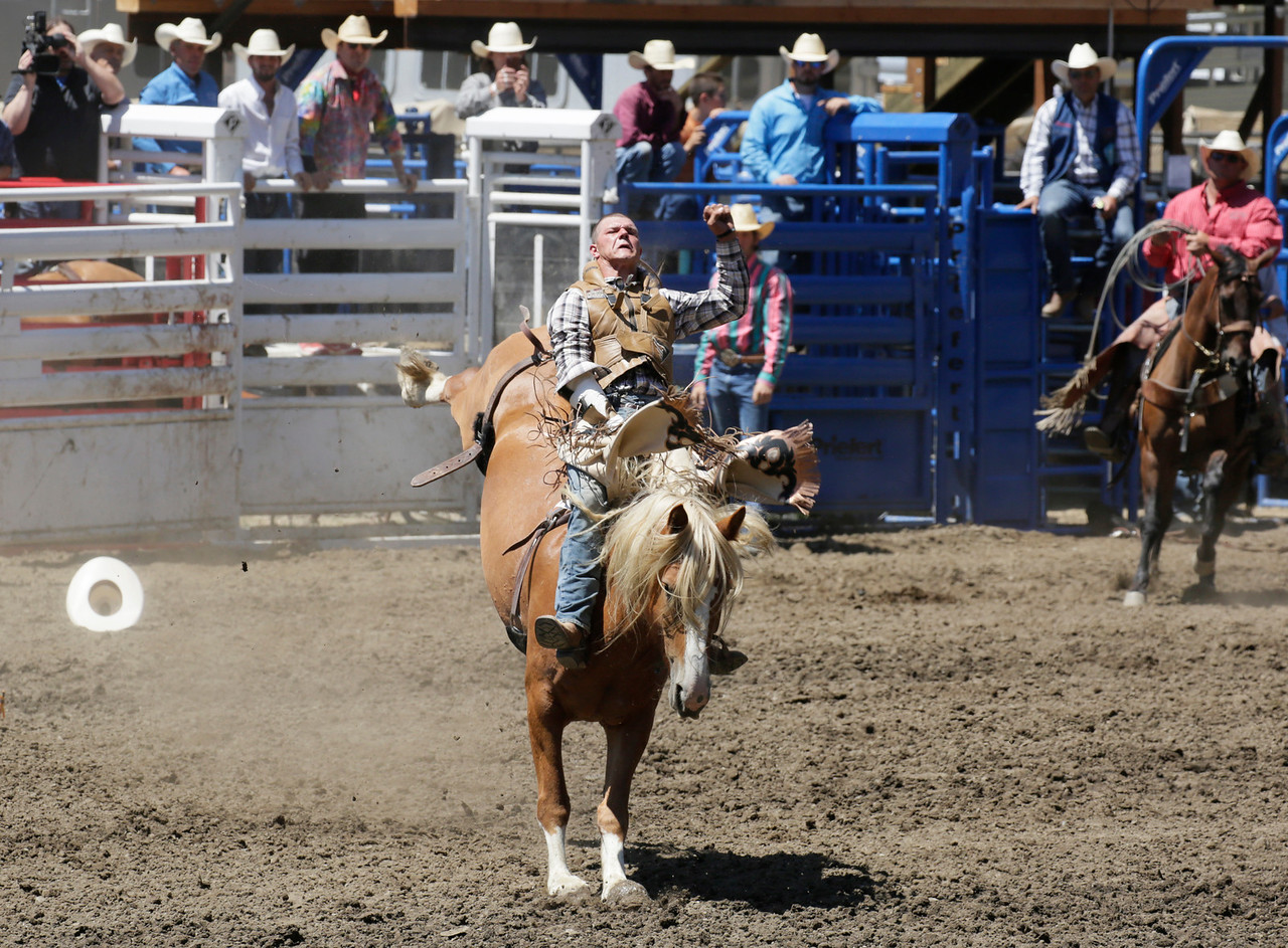 Shaun Walker — The Times-Standard  Casey Meroshnekoff of Red Bluff rides bareback at the Fortuna Rodeo in Rohner Park on Saturday. The rodeo concludes today with a run and walk at 9 a.m., barbecue with live music at 11 a.m., carnival at noon, and rodeo action at 1:30 p.m. For more information, go to fortunarodeo.com.