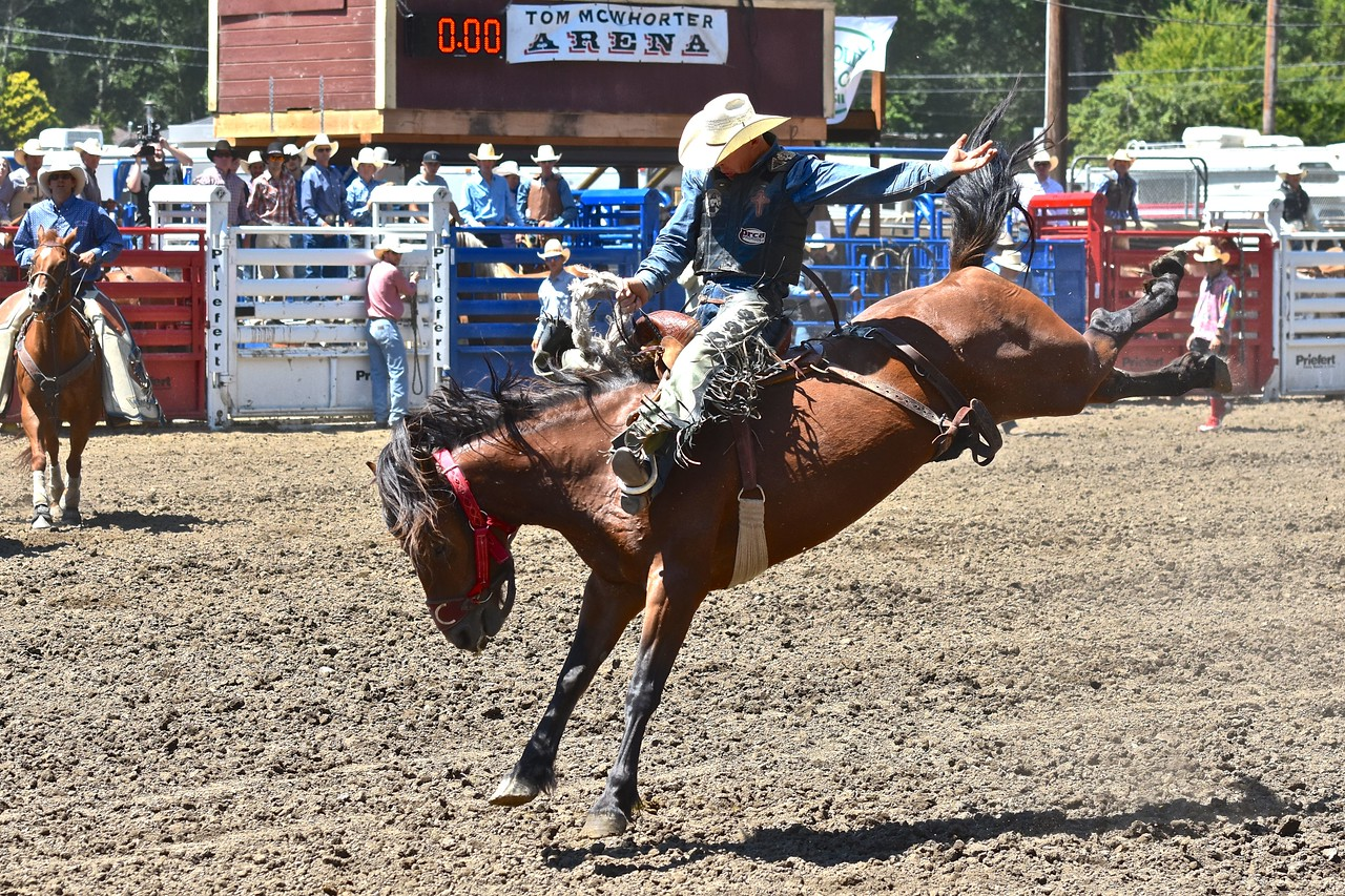 Jessie Williams of Paso Robles shows true cowboy form on this bronc ride. José Quezada—For the Times-Standard
