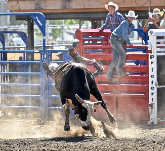JR Liufau of Eureka eats some cowboy dust in the bull riding competition. José Quezada—For the Times-Standard