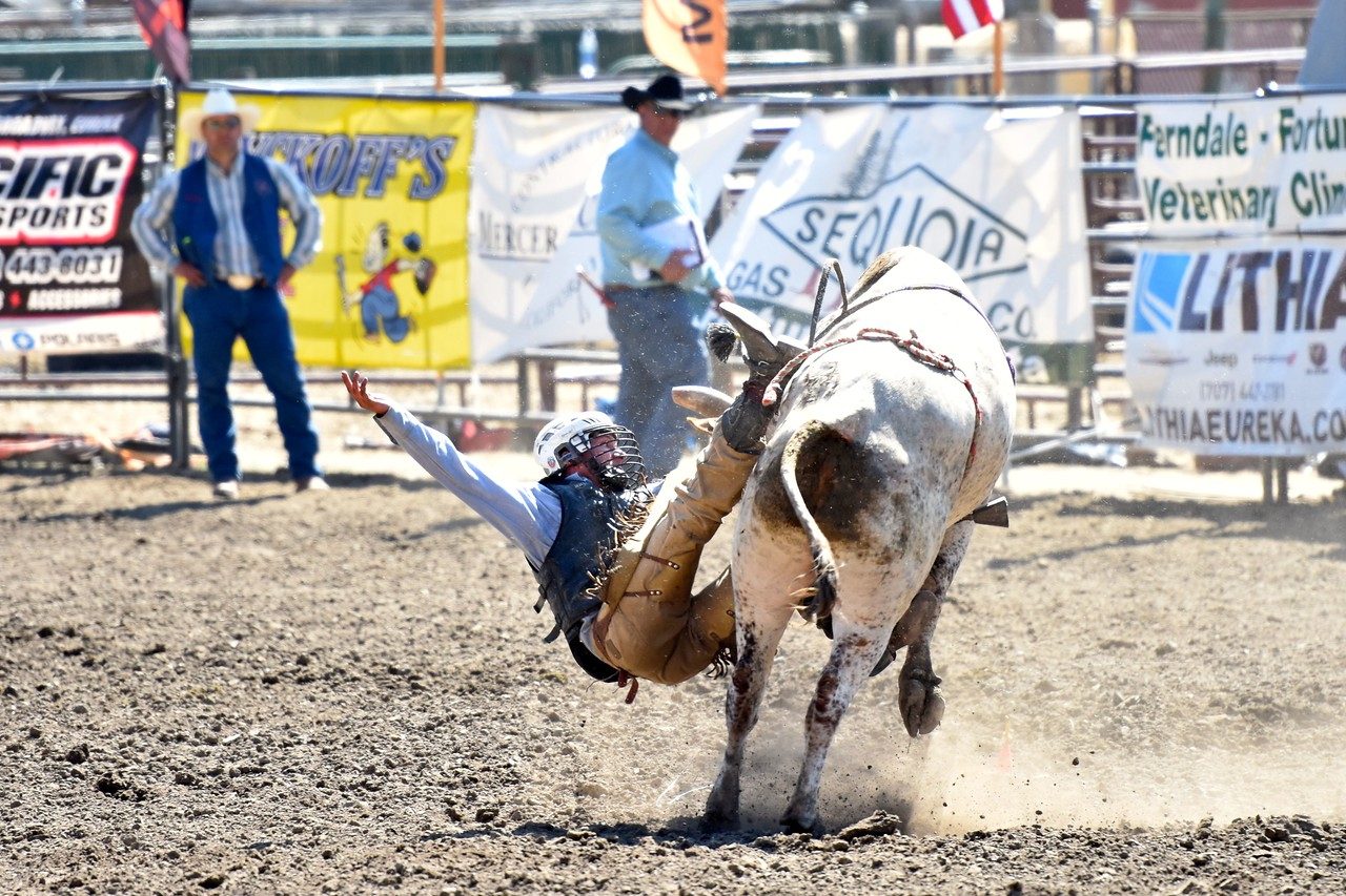 Wacey Vann of Covelo makes an impact on his bull ride. José Quezada—For the Times-Standard