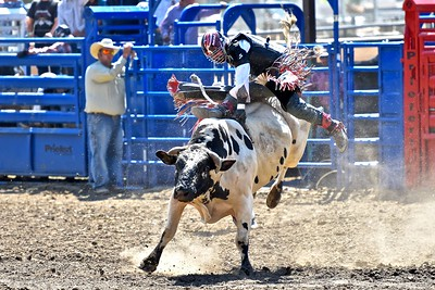 Derek McCormack of Covelo is one boot on, one boot off on this bull ride. José Quezada—For the Times-Standard