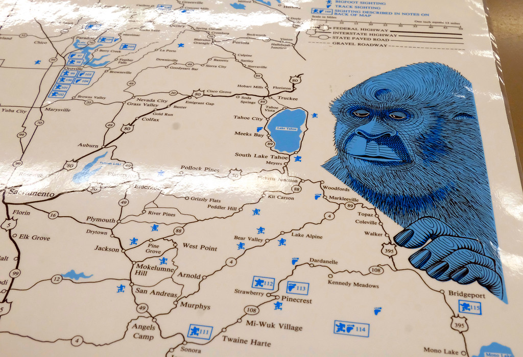 . Shaun Walker � The Times-Standard/ HSU Library  A map shows bigfoot sightings and other notable sasquatch sites at the grand opening of Humboldt State University Library Special Collections.