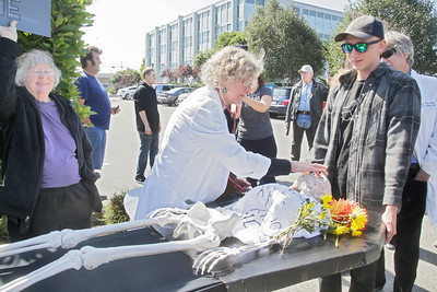 "Shaun Walker — The Times-Standard  Dr. Corinne Frugoni, a family medicine doctor in Eureka, looks over a skeleton with the words ""I had a 'pre-existing condition'"" on it as Liam Eady of Manila, right, helps carry it at a rally to voice support for the Healthy California Act, SB 562, in front of Assembly Member Jim Wood's offices in Eureka on Wednesday. The bill would create a single-payer ""Medicare for All"" health care system in California. The bill has already passed the State Senate, but rally attendees and rally organizers at The North Coast People's Alliance want Wood to strongly support it and for it to make it out of the assembly. Activists in both Ukiah and Santa Rosa hosted parallel events yesterday at Woods district offices there."