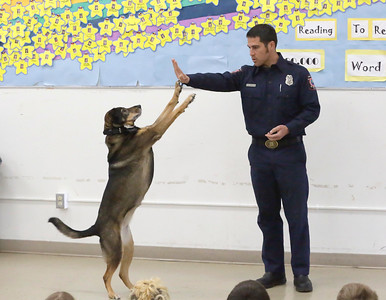 Shaun Walker — The Times-Standard  Cali the Fire Dog high fives Humboldt Bay Firefighter Yolla Montalbin during a presentation to second-graders at Washington Elementary School in Eureka on Friday.