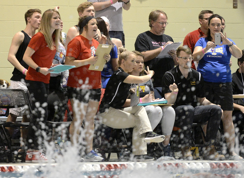 . Loveland and Thompson Valley coaches cheer on their relay teams during the state swimming meet Saturday at the VMAC in Thornton. (Cris Tiller / Loveland Reporter-Herald)