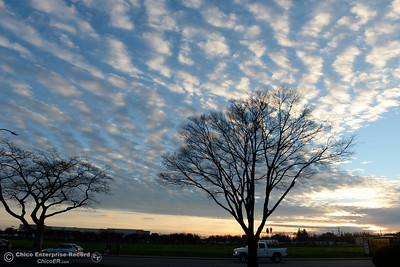 As one storm rolls out, another rolls in above a sillohuette of a tree along Martin Luther King Jr. Parkway seen beneath a cloudy sky in Chico, Calif. Monday Dec. 12, 2016. (Bill Husa -- Enterprise-Record)
