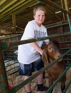 Sean Hansbrough prepares to show his goat Brownie in the Silver Dollar Fair Tuesday May 23, 2017 at the Fairgrounds in Chico, California.  (Emily Bertolino -- Enterprise-Record)