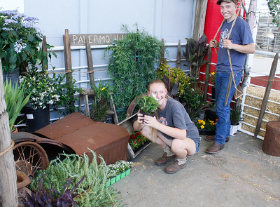 Bailee Sutton and Blake Jayne with Palermo 4-H set up a horticulture display in preparation for the Silver Dollar Fair Tuesday May 23, 2017 at the Fairgrounds in Chico, California.  (Emily Bertolino -- Enterprise-Record)