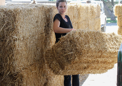 Work continues in preparation for the Silver Dollar Fair Wednesday May 24, 2017 at the Silver Dollar Fairgrounds in Chico, California. (Emily Bertolino -- Enterprise-Record)