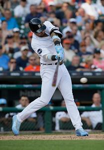 Rays Tigers Baseball