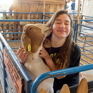 140706 FAIR JUNIOR LIVESTOCK AUCTION