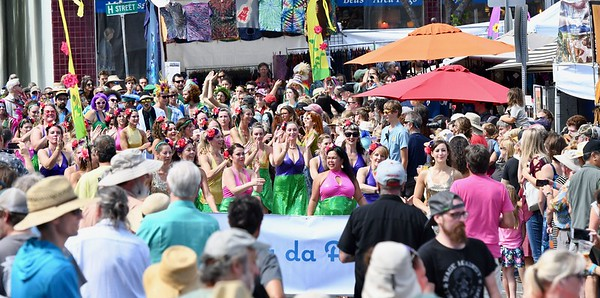 PHOTOS: Samba da Alegria 2017 North Country Fair