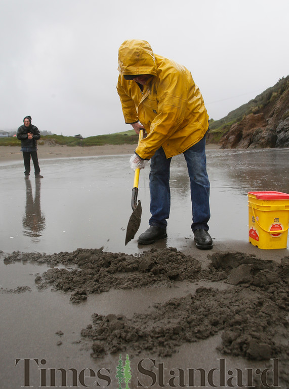 . Shaun Walker � The Times-Standard  James Seat of Blue Lake digs for sand crabs on Trinidad State Beach on a rainy Wednesday afternoon. The thumb-sized crustaceans are excellent bait for fishing for delicious surf perch, he said. Showers were expected through this afternoon on the coast, and then a 20-percent chance of showers through 11 a.m. Friday. Saturday should be dry and a short rainstorm should hit on Sunday.