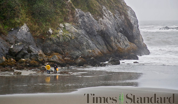 PHOTOS: Sand crab hunting on Trinidad State Beach