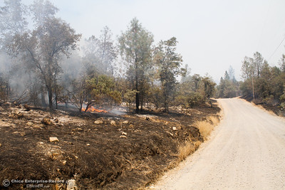 A view of some of the Wall Fire damages along Swedes Flat Road Saturday July 8, 2017 in Oroville, California.  (Emily Bertolino -- Enterprise-Record)