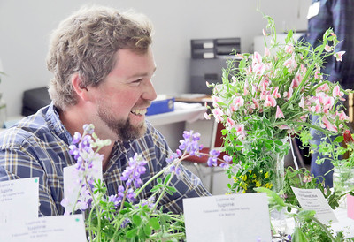 Shaun Walker — The Times-Standard  Green Diamond Botanist Gabe Cashman smiles as he helps colleagues identify entries at the Wildflower Show and Spring Plant Sale at the Jefferson Community Center in Eureka on Friday. The North Coast Chapter of the California Native Plant Society's 35th-annual show continues Saturday 10 a.m. to 5 p.m. and Sunday 10 a.m. to 4 p.m. It features the variety and beauty of native wildflowers of this region and hundreds of native plants will be available for sale.