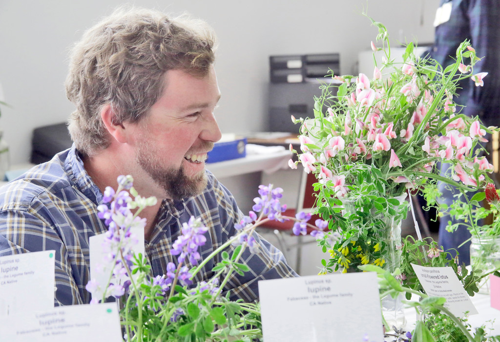 . Shaun Walker � The Times-Standard  Green Diamond Botanist Gabe Cashman smiles as he helps colleagues identify entries at the Wildflower Show and Spring Plant Sale at the Jefferson Community Center in Eureka on Friday. The North Coast Chapter of the California Native Plant Society\'s 35th-annual show continues Saturday 10 a.m. to 5 p.m. and Sunday 10 a.m. to 4 p.m. It features the variety and beauty of native wildflowers of this region and hundreds of native plants will be available for sale.