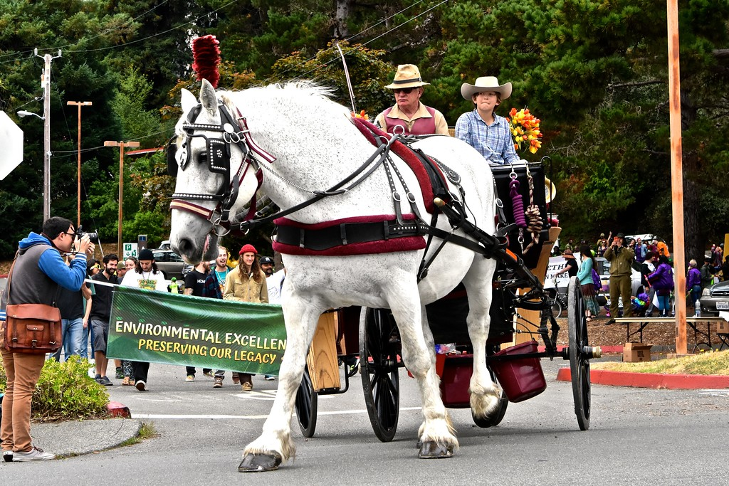 . History was made as the Old Town Carriage Company led the first Yes We Cann Parade out of the Humboldt State University parking lot and on to 14th Street leading uniquely decorated floats and vehicles. José Quezada�For the Times-Standard