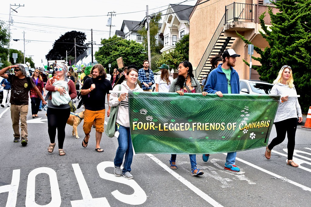 . The four-legged also benefit, according to these marchers.  José Quezada�For the Times-Standard
