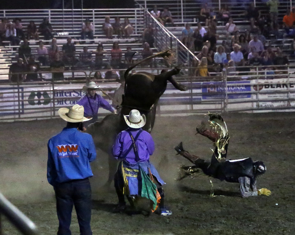 . MATT MURPHY - DAILY DEMOCRAT The Yolo County Fair welcomed thousands this past week, who gathered to enjoy rides, carnival games, music, food, art and more during the five-day event. This year�s theme was �Pigs, Pies and Paintings.""