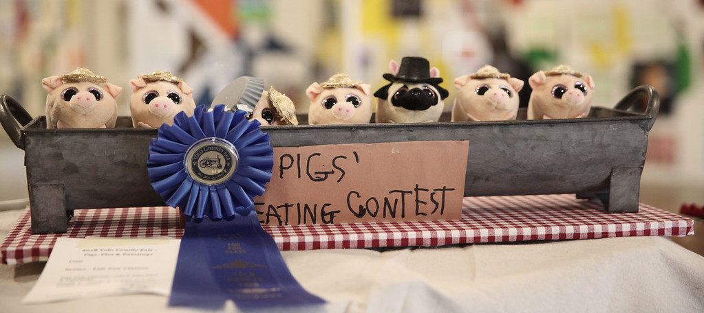 . SARAH DOWLING - DAILY DEMOCRAT The Yolo County Fair welcomed thousands this past week, who gathered to enjoy rides, carnival games, music, food, art and more during the five-day event. This year�s theme was �Pigs, Pies and Paintings.""